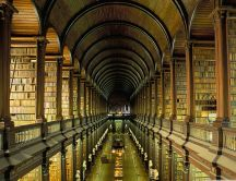 Big old library - millions of books