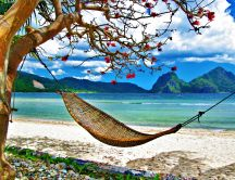 Hammock on a beautiful island