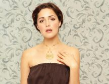 Rose Byrne - beautiful actress HD wallpaper