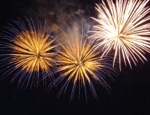 Happy New Year - fireworks on the sky HD wallpaper