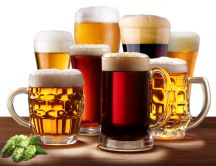 Choose the favorite glass of beer HD wallpaper