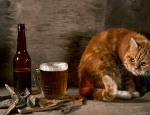 Cat - Who eat my fish and drink my beer?
