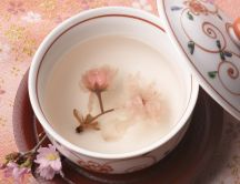 Hand painted tea cup HD wallpaper