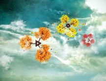 Four seasons on the sky HD abstract wallpaper