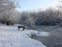Footprints in the park near a frozen lake HD wallpaper
