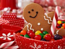 Christmas holiday - a gingerbread man guards the candy bowl
