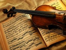 Violin - a music that enchants us