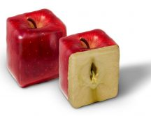 Boxy red apples - abstract fruits