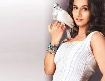 Vidya Balan is holding a white dove - HD wallpaper