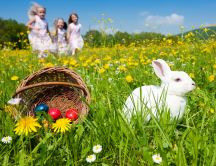 Easter basket - spring time