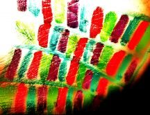 Artistic colorful stripes - red and green
