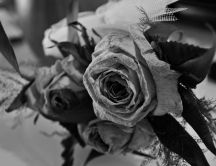 A bouquet of roses filled with memories - black and white
