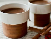 Hot chocolate with cinnamon - HD wallpaper