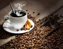 Fragrant coffee with cinnamon - HD wallpaper
