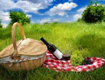 Relaxing time - picnic and a wonderful landscape