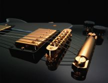 Beautiful guitar - golden instrument