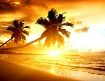 Bright sunlight - sunrise on the beach
