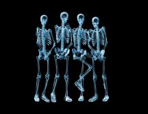 Funny shy skeletons - HD wallpaper
