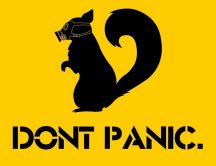 Funny squirrel wear gas mask - Don't panic