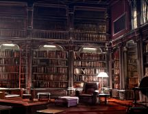 Big library with all the books you need