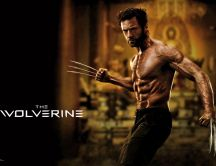 The Wolverine poster - beautiful movie in 2013