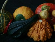 Vegetables - autumn riches