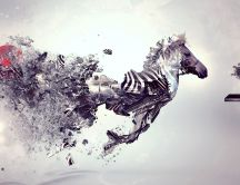 Digital art - beautiful zebra - free HD wallpaper
