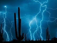 Wonderful force of nature - lightnings in the desert