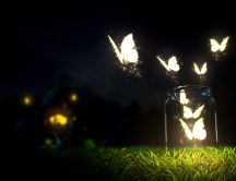 Glowing butterflies lighting in the dark - HD wallpaper