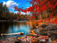 Beautiful autumn color - red leaves and wonderful lake