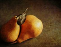 Wonderful fruit paint - delicious autumn pears