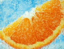 Orange slice in mineral water - fruit juice