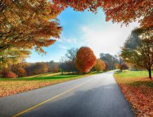 Road in nature - beautiful autumn landscape