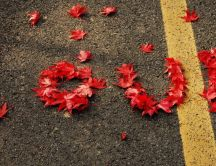 Love message on the road - red autumn leaves