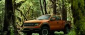 Big car in the forest - the powerful Ford Raptor