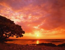 The warm colour of the sunset - beautiful nature