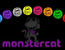 Different colour for dj monster car - funny HD wallpaper