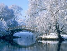 Winter time - bridge over the froze lake
