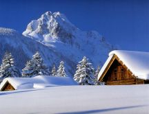 Mountain top full with snow - white winter wallpaper