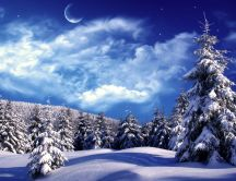 Cold winter night - fantastic blue sky