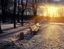 Beautiful sunset in the park - winter season