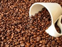 Perfect coffee beans for a perfect drink - HD wallpaper