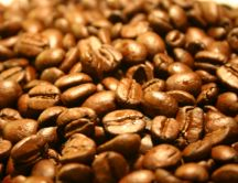 Roasted coffee beans - HD wallpaper