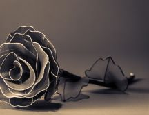 Beautiful paper rose - romantic flower