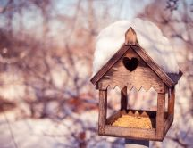 Sweet birdhouse - HD wallpaper