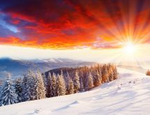 Wonderful orange sunlight over the white nature
