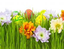 Colored eggs hidden in the grass - Happy Easter Holiday