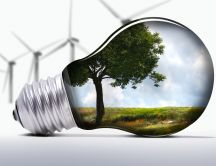 Life in a bulb - HD abstract wallpaper