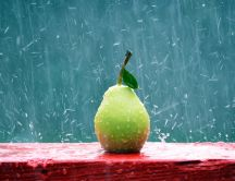 Fruit of the summer - delicious pear in the rain