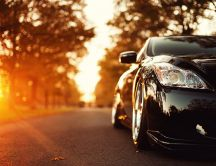 Black shiny car in the sunshine - HD autumn season